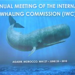 IWC 2010 meeting banner