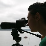 Kirsty, looking for whales
