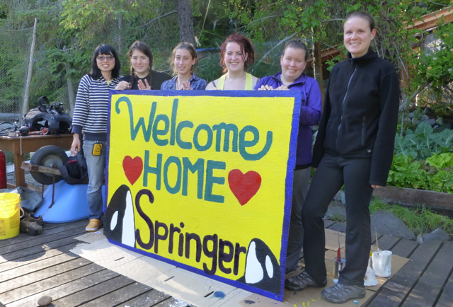 Welcome home Springer sign 2013 P1040146 - Version 2